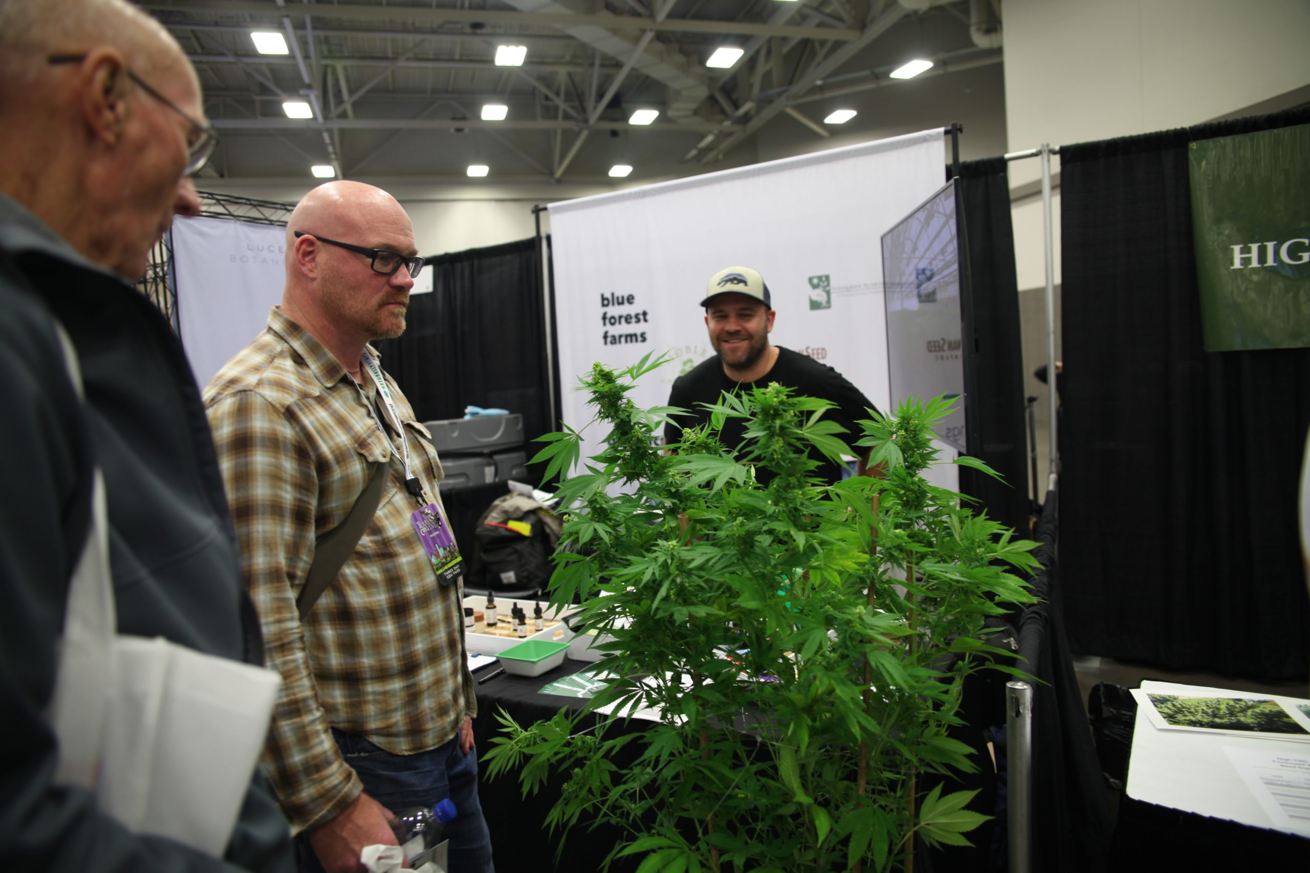 The Hemp Convention in Dallas attracted 15,000 attendees, and even more questions.