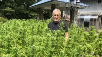 A hemp pioneer: Hendley was first licensed grower in McDowell - McDowell News