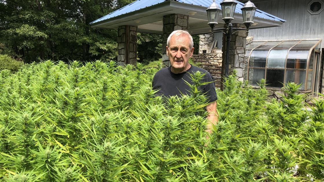 A hemp pioneer: Hendley was first licensed grower in McDowell - McDowell News