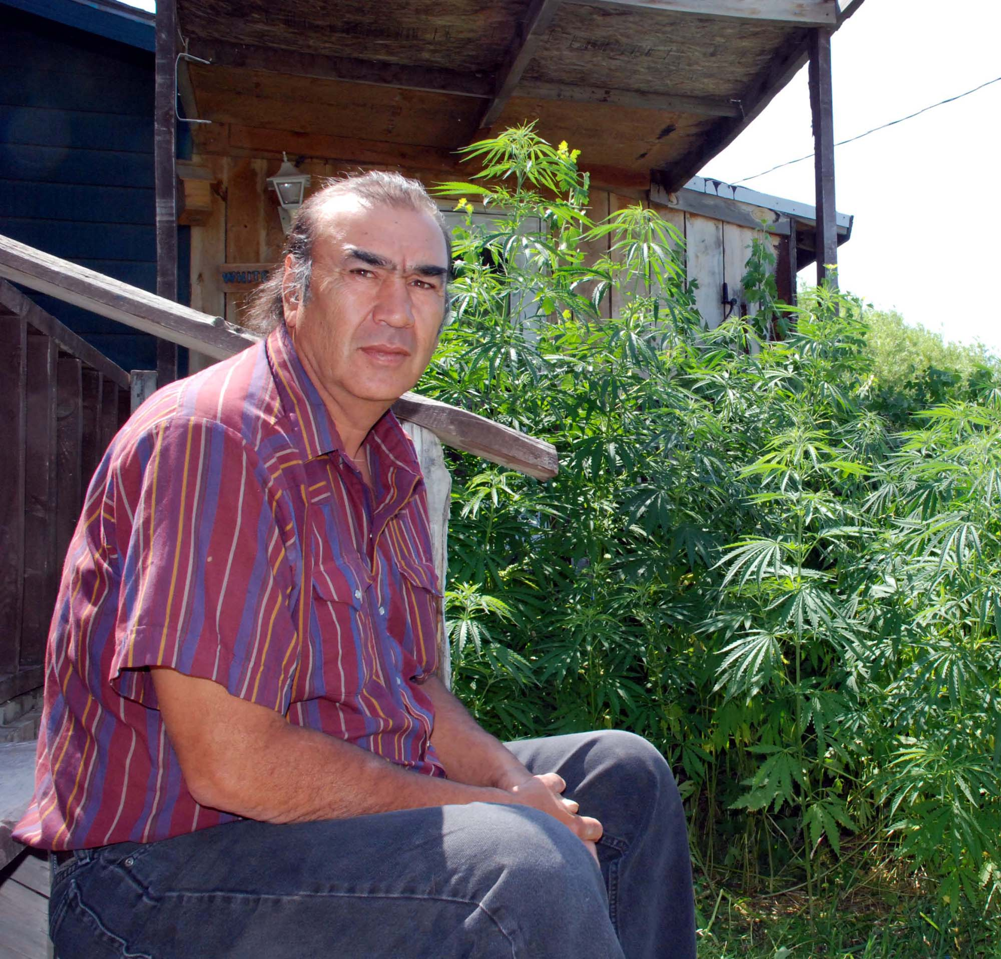 A tribal hemp market? Thanks, South Dakota. - News Maven