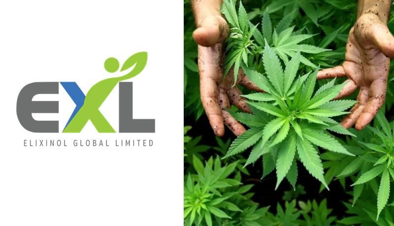 Elixinol Global