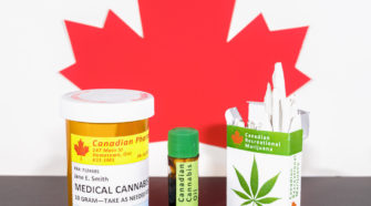 Strainprint releases report on how seniors using cannabis to treat mental, physical conditions.