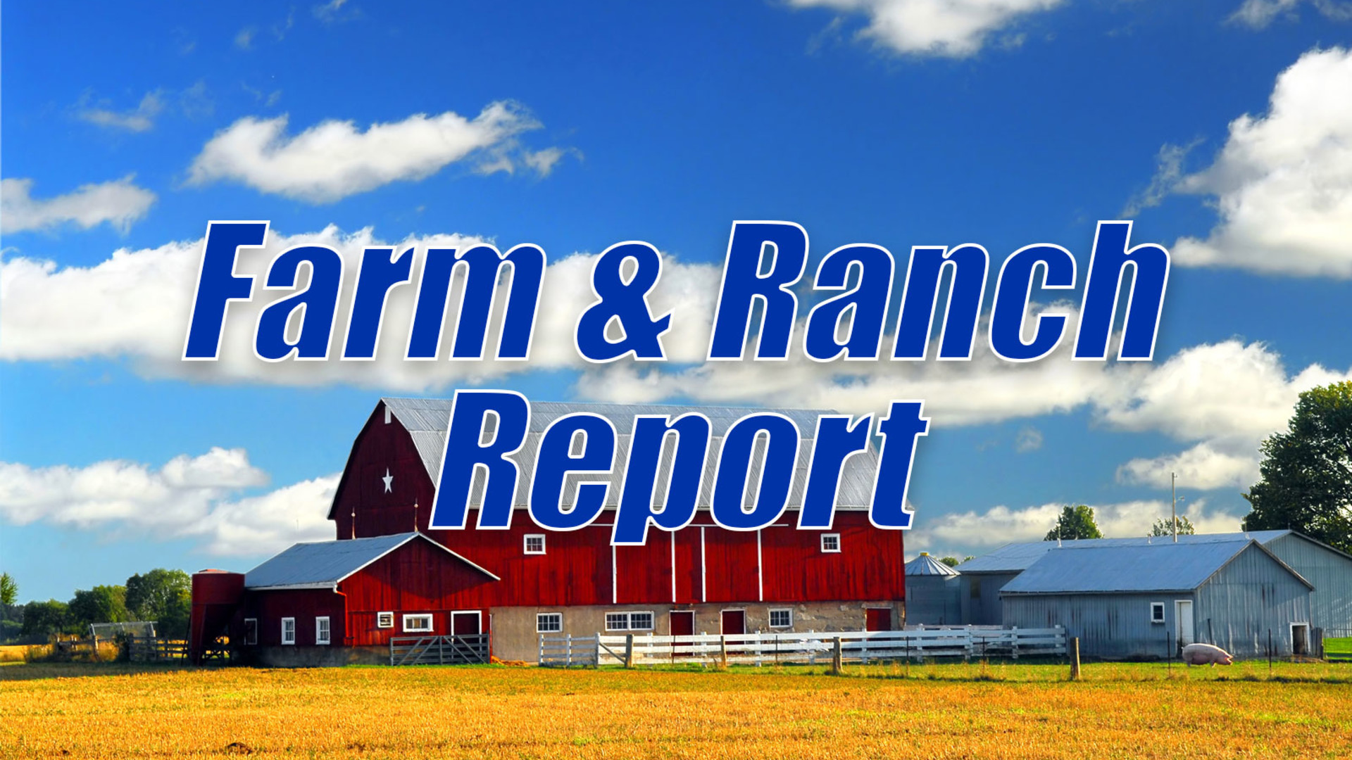 Bankers are also Interested in Hemp - AG INFORMATION NETWORK OF THE WEST - AGInfo Ag Information Network Of The West