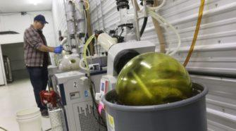 CBD oil processor, hemp farmers spitting profits | Farm Forum - AberdeenNews.com