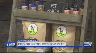 CBD oils for pets