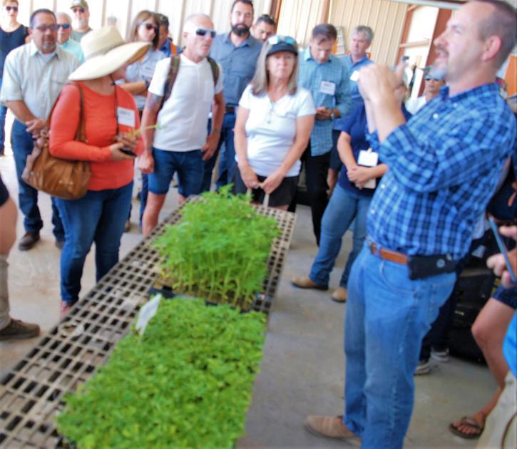 Community members tour hemp facilities - Imperial Valley Press