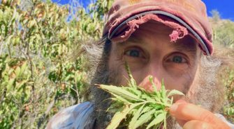Author Doug Fine loved hemp so much after writing about it that he became a farmer.