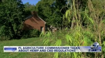 FL Agriculture Commissioner working on new hemp law and regulating CBD - WWSB