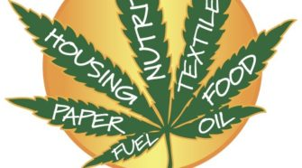 Farm Leader Expects Interim Committee To Come Up With Hemp Proposal - WNAX