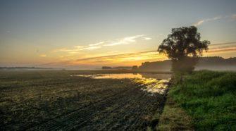 Flooding delaying new crop of hemp in Kansas - fox4kc.com