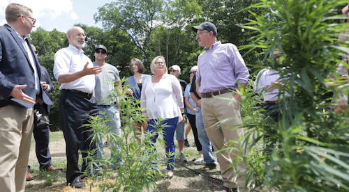 Gov. Wolf touts commercial hemp production in Pennsylvania - New Hope Free Press