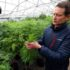 Grand Junction hemp business raises millions in investment - The Grand Junction Daily Sentinel