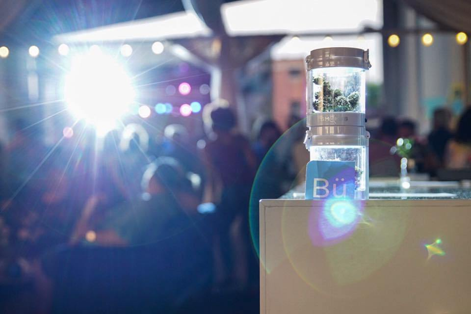 Blühen Botanicals Investment News