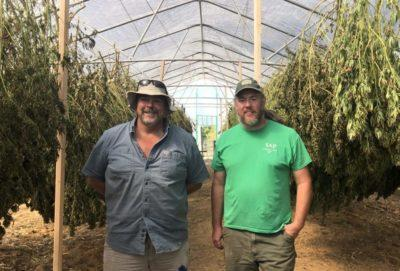 Hemp Farmers Form Cooperatives Amid Growth And Uncertainty - West Virginia Public Broadcasting