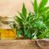 Hemp advocates press FDA to act on CBD - IEG Policy