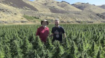 Hemp attracts a new generation of farmers - Bend Bulletin