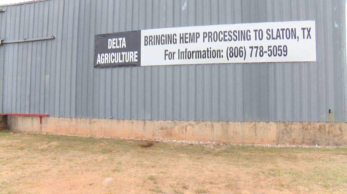 Hemp farming and processing facility coming to Slaton - KCBD