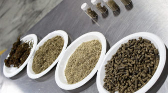 Hemp growers may find bottleneck on processing side | 2019-10-01 - Agri-Pulse