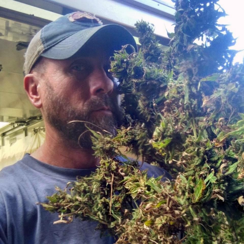 Hemp presents Kansas farmers with opportunity, risk - Salina Journal
