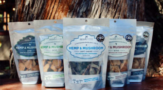 Holistic Hound adds CBG oil to line of hemp-based products - Pet Food Processing