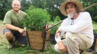 Honey Hill Hemp sprouts purpose in Culpeper County - Fredericksburg.com