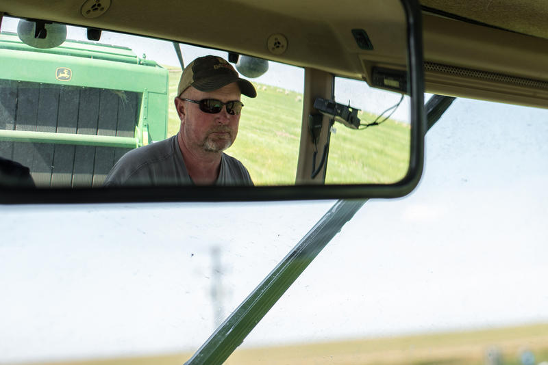 In Montana, Growing Hemp Can Still Be Risky For Farmers - MTPR