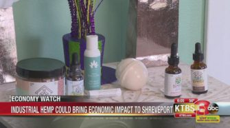 Industrial Hemp could be a major economic impact for Shreveport - KTBS