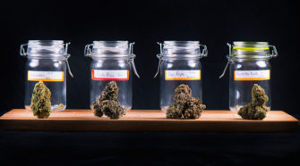 Lawyer Up: Dreaming of the Apple Store of Cannabis? Don't Hold Your Breath