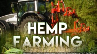 Louisiana farmers could soon start growing industrial hemp - KALB News