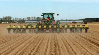 Industrial Hemp Planting Season