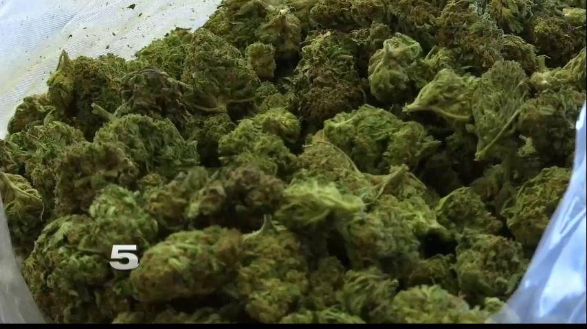 Marijuana or hemp? New tech can help Texas law enforcement tell the difference - KRGV