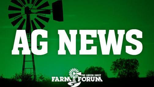 Midwest Hemp Forum set for Feb. 21 in Nebraska - AberdeenNews.com