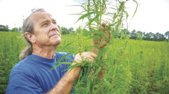 Mohave County hemp farm poised to plant its first seeds - Today's News-Herald