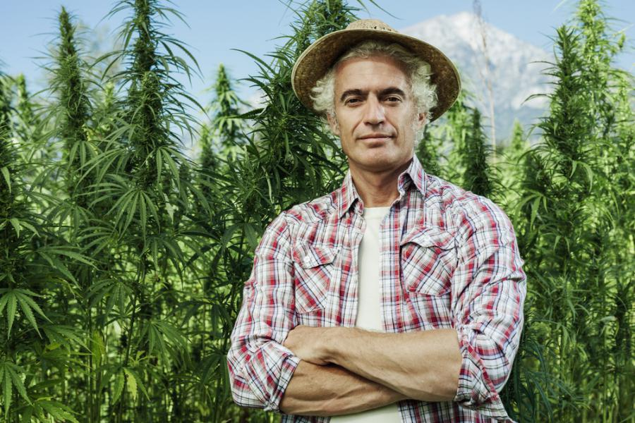 NATIONAL HEMP BOOT CAMP COMES TO DES MOINES, IOWA ON FEBRUARY 29 - EIN News