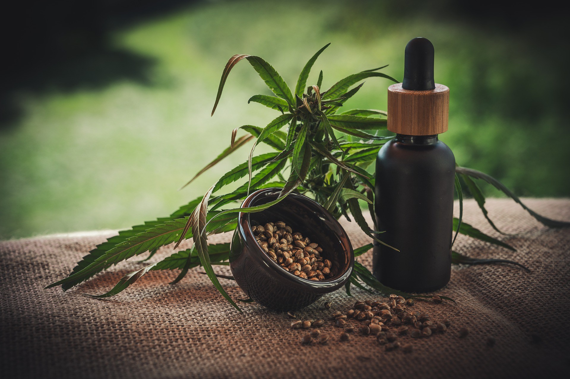 Orchid Ventures Announces The Publishing Of A CBD Absorption Study Using CELLg8® In The American Journal Of Endocannabinoid Medicine