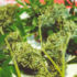 Pointed Comments On USDA Hemp Rules | Cannabis Events, Culture and News - Heady Vermont