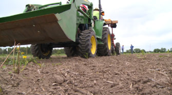 Research team tests hemp growing processes in Chippewa Co. - WEAU