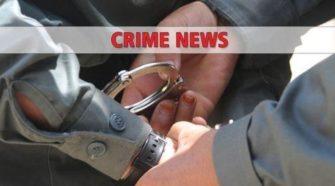 Three Kingston men allegedly stole 22 pounds of hemp from local farm: police - Poughkeepsie Journal