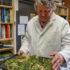 USU Extension co-hosts public hemp seminar - The Times-Independent