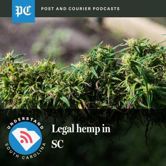 Understand SC: The unintended consequences of legalizing hemp - Charleston Post Courier
