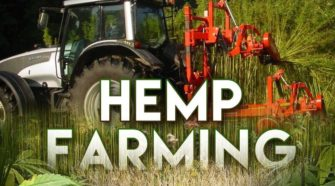Wiregrass Hemp Plants in the Ground - WTVY, Dothan