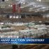 World's largest hemp auction underway off at the Williamson County Expo - WATE 6 On Your Side
