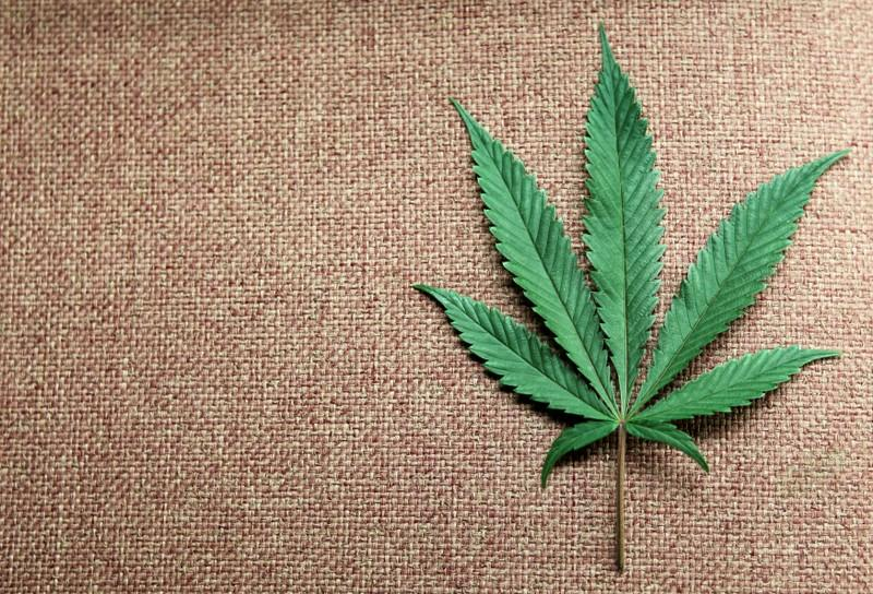 World High Life buys Britain's Love Hemp in bet on cannabis growth - Reuters